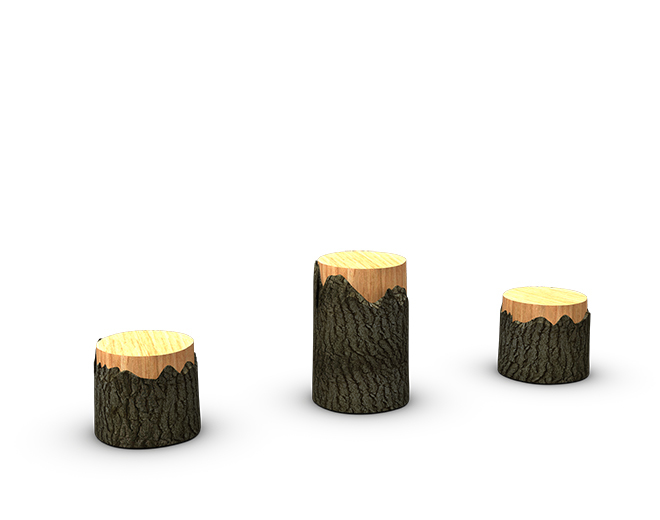 Tree Stumps Image