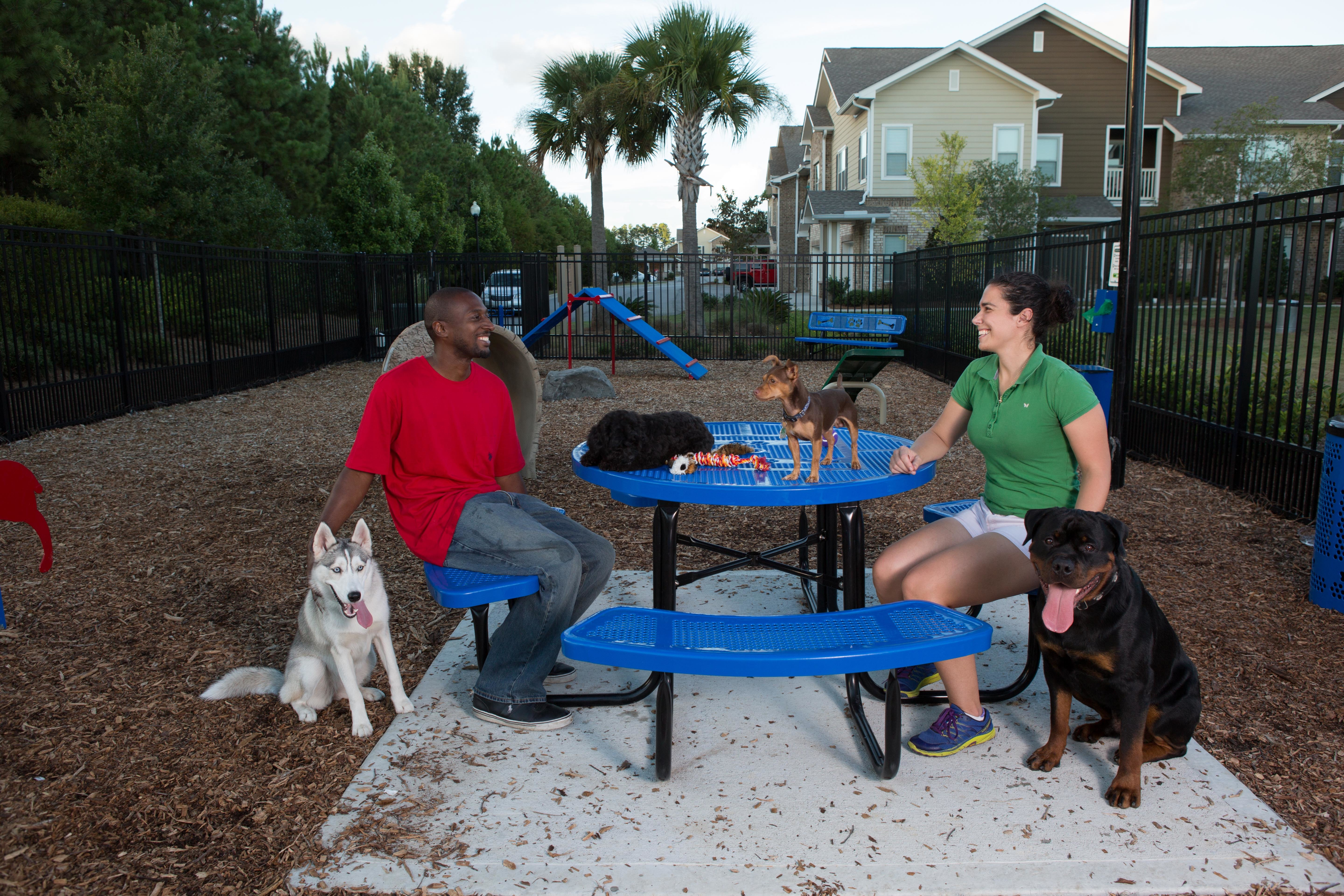 Blue Chow Hound Table with people sitting with their dogs.