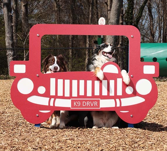 Two dogs posing in Joy Ride Photo Booth