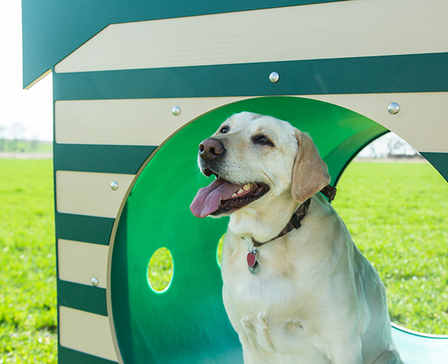 Recycled Crawl Tunnel W/Dog House Lifestyle Image